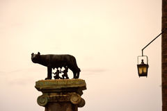 Capitoline Wolf Rome Italy Stock Images