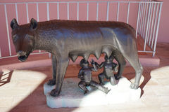 Capitoline Wolf Romulus Remus Statue Royalty Free Stock Photography