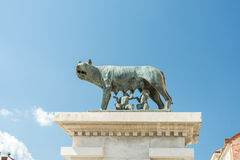 The Capitoline Wolf Statue Royalty Free Stock Photos