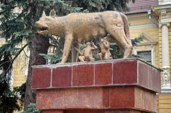 Landmark attraction in Brasov, Romania. Statue Capitoline wolf with Remus and Romulus, in front of the Town Hall Royalty Free Stock Images