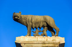 Capitoline Wolf statue in Rome, Italy Royalty Free Stock Image