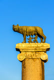 Capitoline Wolf statue in Rome, Italy Stock Images
