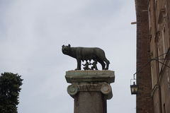 The Capitoline Wolf and twins. In Rome, Italy Royalty Free Stock Images