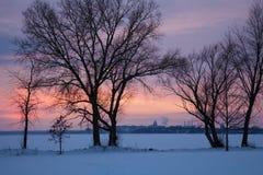 Capitolio de Wisconsin visto a través del lago Monona Foto de archivo