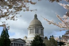 Capitolio del estado de Washington en resorte Foto de archivo libre de regalías