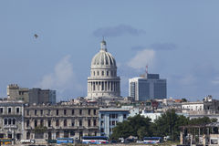 Capitolio view from sea Stock Photo