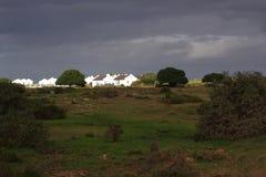 Capo ad ovest Sudafrica della riserva naturale di De Hoop Immagini Stock