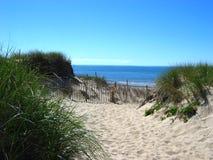 Capo Cod, spiaggia 03 Fotografia Stock Libera da Diritti