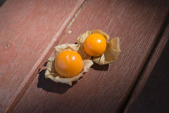 Capo Goosberry Fotografia Stock