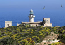 Capo Grosso lighthouse Stock Images