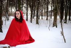 Capo motor de montar a caballo rojo en el bosque del invierno Fotografía de archivo