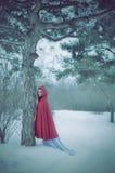 Capo motor de montar a caballo rojo en el bosque del invierno Fotografía de archivo libre de regalías