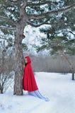 Capo motor de montar a caballo rojo en el bosque del invierno Imagen de archivo