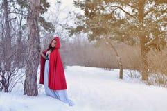 Capo motor de montar a caballo rojo en el bosque del invierno Foto de archivo