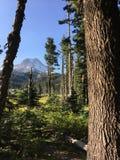 Capo motor del Mt, Oregon con la luna Fotografía de archivo libre de regalías