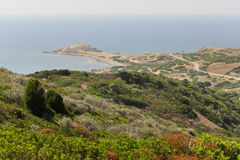 Capo Pecora Sardinia Royalty Free Stock Image