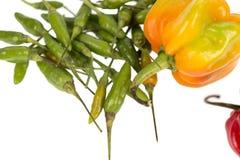 Capo y pimientas de chile verdes Imagenes de archivo
