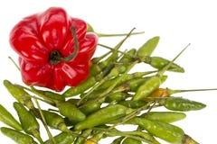 Capo y pimientas de chile verdes Fotos de archivo