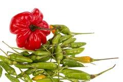 Capo y pimientas de chile verdes Fotos de archivo libres de regalías