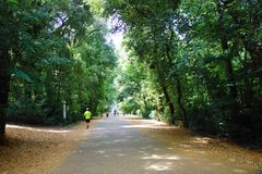 Capodimonte park Obraz Royalty Free