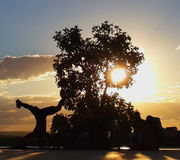 Capoeira χορού Στοκ φωτογραφία με δικαίωμα ελεύθερης χρήσης