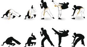 Capoeira Royalty-vrije Stock Afbeelding