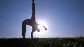 Capoeira auf dem Rasen stock video footage