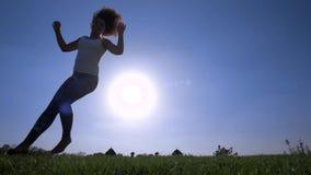 Capoeira auf dem Rasen stock video