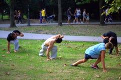 Capoeira training  in city park Royalty Free Stock Photos