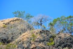 Capones-Insel Lizenzfreies Stockfoto