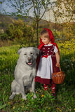 Capot et loup d'équitation rouges Images libres de droits