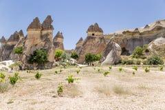 Cappadocia,土耳其 Multihead向在修士(谷Pashabag)的谷的蘑菇扔石头 库存图片