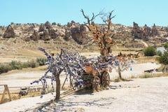 Cappadocia in der Türkei Lizenzfreie Stockbilder