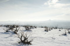 Cappadocia en hiver Image libre de droits