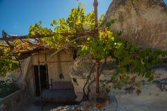Cappadocia, Goreme, Turkije Schommel het huis met de open deur Druiven die op het huis groeien royalty-vrije stock afbeeldingen