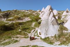 Cappadocia landscape with rock and camel Royalty Free Stock Photos