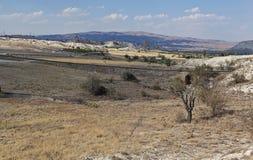 Cappadocia Landscape 5 Royalty Free Stock Image