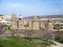 Cappadocia love valley in spring Royalty Free Stock Image