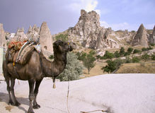 Cappadocia Rock Landscapes Royalty Free Stock Photo