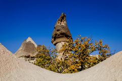 Cappadocia, Turkey. Fairy Chimney. Multihead stone mushrooms in the Valley of the Monks. Pasabag Valley.  Royalty Free Stock Photography