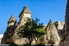 Cappadocia, Turkey. Fairy Chimney. Multihead stone mushrooms in the Valley of the Monks. Pasabag Valley.  Stock Image