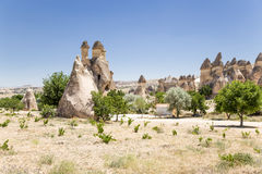Cappadocia, Turkey. Stone mushrooms with cells inside then at the Valley of the Monks (Valley Pashabag) Royalty Free Stock Photo