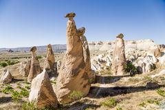 Cappadocia, Turkey. Stone mushrooms (pillars of weathering, outliers) near Cavusin Royalty Free Stock Images