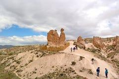 Cappadocia Turkiet - April 29, 2014: Cappadocia Geologiska bildande för kamel, erhållande på grund av erosion Fotografering för Bildbyråer