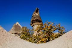 Cappadocia, Turquie Cheminée féerique Multihead lapident des champignons dans la vallée des moines Vallée de Pasabag Photographie stock libre de droits