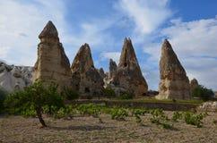 Cappadocia. Valley,stone mushrooms, stone pillars Stock Images