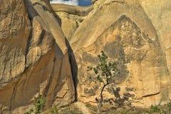 Cappadocian Valley Royalty Free Stock Photo