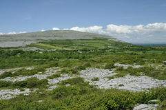 Cappanawalla Mountain. From Corkscrew Hill, The Burren, Co. Clare, Ireland Royalty Free Stock Image