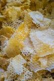 Capped honeycomb Stock Photo