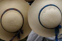 Cappelli di Panama Immagini Stock Libere da Diritti